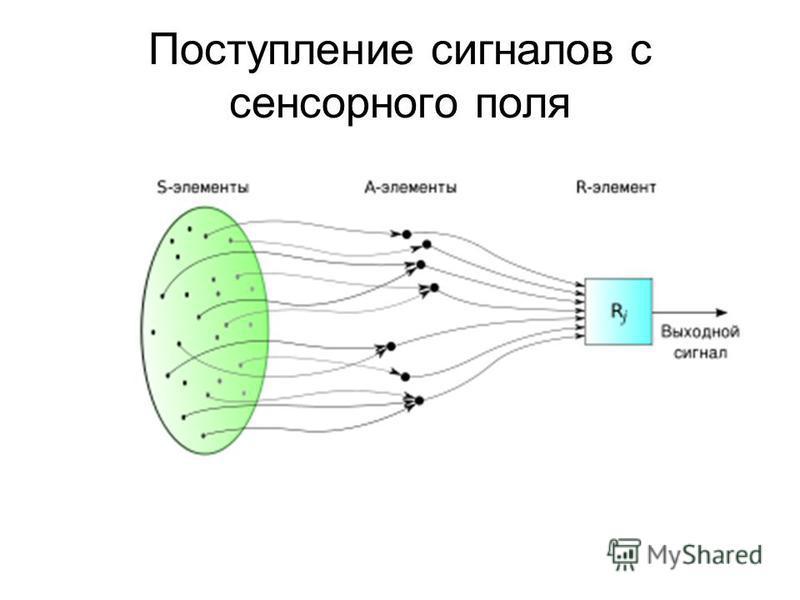 Поступление сигналов с сенсорного поля