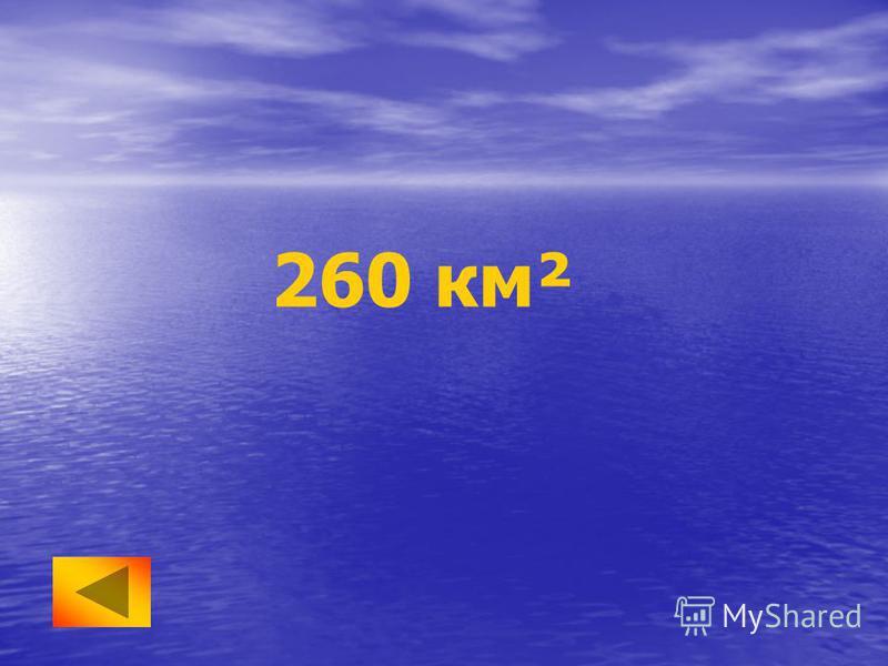 260 км²