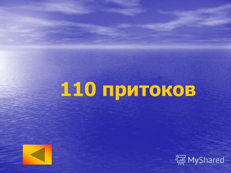 110 притоков