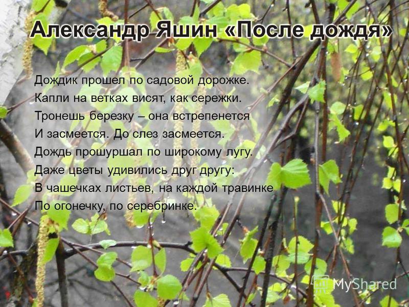 Дождик прошел по садовой дорожке. Капли на ветках висят, как сережки. Тронешь березку – она встрепенется И засмеется. До слез засмеется. Дождь прошуршал по широкому лугу. Даже цветы удивились друг другу: В чашечках листьев, на каждой травинке По огон