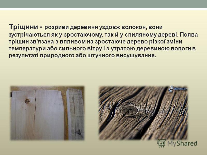 Тріщини - розриви деревини уздовж волокон, вони зустрічаються як у зростаючому, так й у спиляному дереві. Поява тріщин зв'язана з впливом на зростаюче дерево різкої зміни температури або сильного вітру і з утратою деревиною вологи в результаті природ