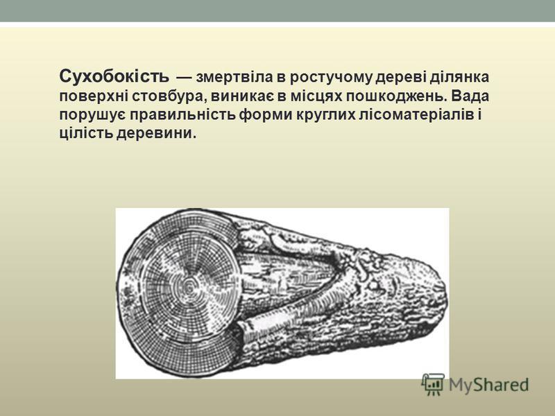 Сухобокість змертвіла в ростучому дереві ділянка поверхні стовбура, виникає в місцях пошкоджень. Вада порушує правильність форми круглих лісоматеріалів і цілість деревини.