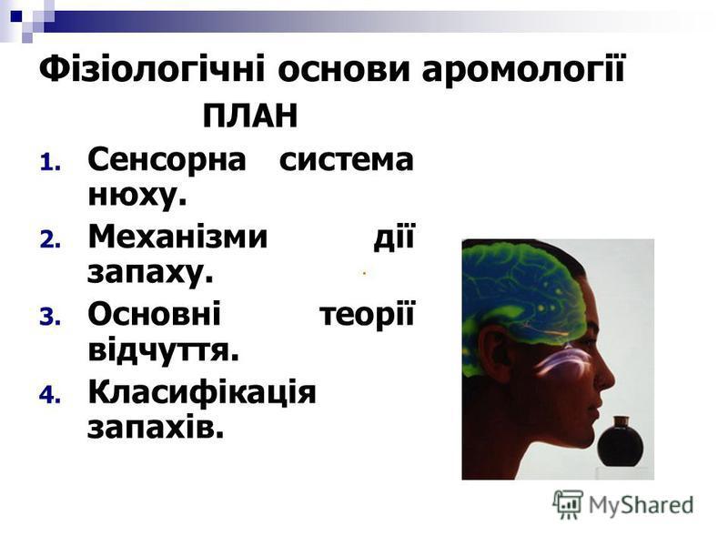 Фізіологічні основи аромології ПЛАН 1. Сенсорна система нюху. 2. Механізми дії запаху. 3. Основні теорії відчуття. 4. Класифікація запахів.
