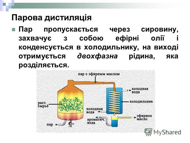 Парова дистиляція Пар пропускається через сировину, захвачує з собою ефірні олії і конденсується в холодильнику, на виході отримується двохфазна рідина, яка розділяється.