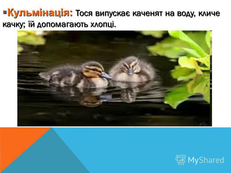 Кульмінація: Тося випускає каченят на воду, кличе качку; їй допомагають хлопці. Кульмінація: Тося випускає каченят на воду, кличе качку; їй допомагають хлопці.