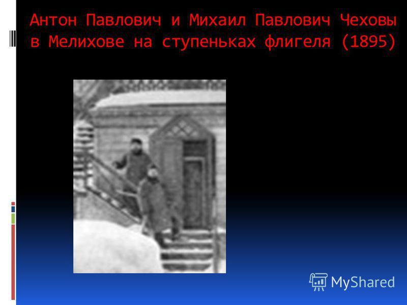 Антон Павлович и Михаил Павлович Чеховы в Мелихове на ступеньках флигеля (1895)
