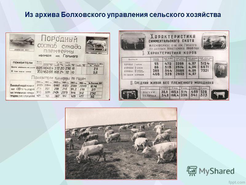 Из архива Болховского управления сельского хозяйства