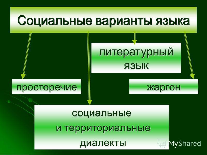 Социальные варианты языка литературный язык социальные и территориальные и территориальные диалекты диалекты просторечие жаргон