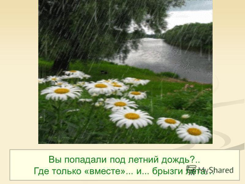 Вы попадали под летний дождь?.. Где только «вместе»... и... брызги лета…