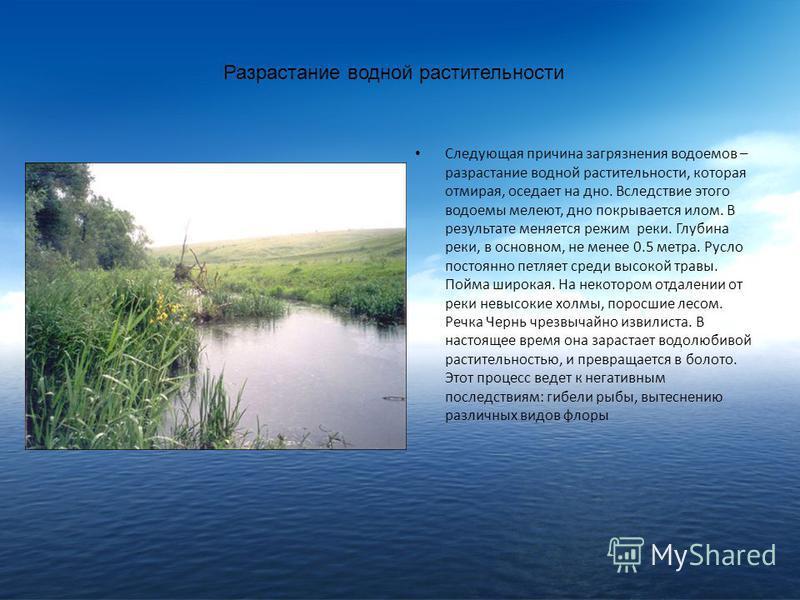 Разрастание водной растительности Следующая причина загрязнения водоемов – разрастание водной растительности, которая отмирая, оседает на дно. Вследствие этого водоемы мелеют, дно покрывается илом. В результате меняется режим реки. Глубина реки, в ос