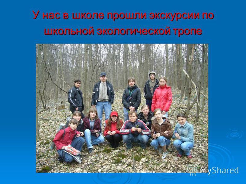 У нас в школе прошли экскурсии по школьной экологической тропе