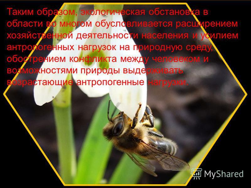 Таким образом, экологическая обстановка в области во многом обусловливается расширением хозяйственной деятельности населения и усилием антропогенных нагрузок на природную среду, обострением конфликта между человеком и возможностями природы выдерживат