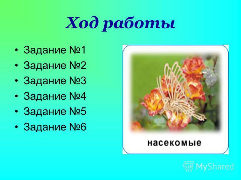 Ход работы Задание 1 Задание 2 Задание 3 Задание 4 Задание 5 Задание 6