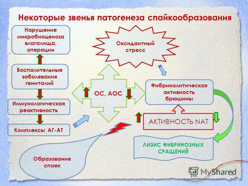 Некоторые звенья патогенеза спайкообразования 3 Образование спаек Воспалительные заболевания гениталий Иммунологическая реактивность Нарушение микробиоценоза влагалища, операции Оксидантный стресс Фибринолитическая активность брюшины ОС, АОС АКТИВНОС