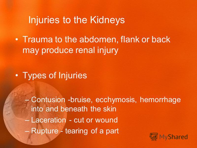 Injuries to the Kidneys Trauma to the abdomen, flank or back may produce renal injury Types of Injuries –Contusion -bruise, ecchymosis, hemorrhage into and beneath the skin –Laceration - cut or wound –Rupture - tearing of a part