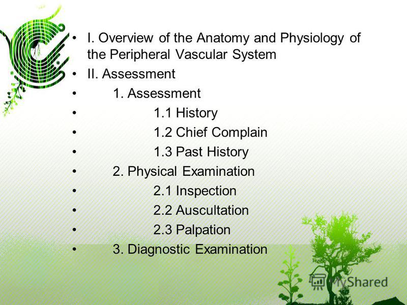 I. Overview of the Anatomy and Physiology of the Peripheral Vascular System II. Assessment 1. Assessment 1.1 History 1.2 Chief Complain 1.3 Past History 2. Physical Examination 2.1 Inspection 2.2 Auscultation 2.3 Palpation 3. Diagnostic Examination