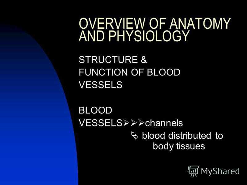 OVERVIEW OF ANATOMY AND PHYSIOLOGY STRUCTURE & FUNCTION OF BLOOD VESSELS BLOOD VESSELS channels blood distributed to body tissues