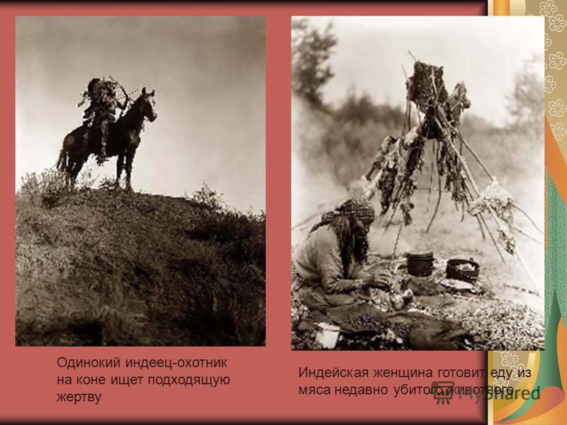 Индейская женщина готовит еду из мяса недавно убитого животного Одинокий индеец-охотник на коне ищет подходящую жертву