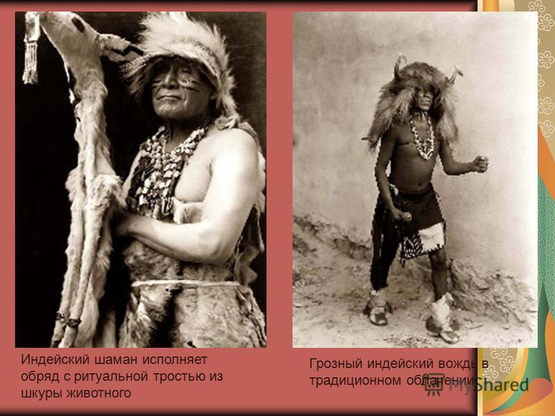 Индейский шаман исполняет обряд с ритуальной тростью из шкуры животного Грозный индейский вождь в традиционном облачении