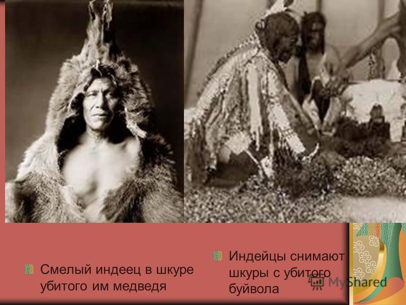 Смелый индеец в шкуре убитого им медведя Индейцы снимают шкуры с убитого буйвола