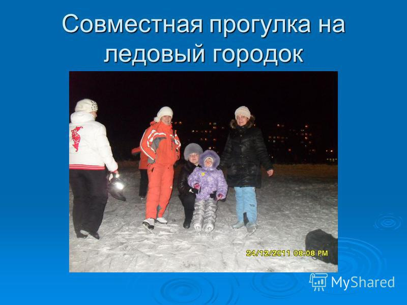 Совместная прогулка на ледовый городок