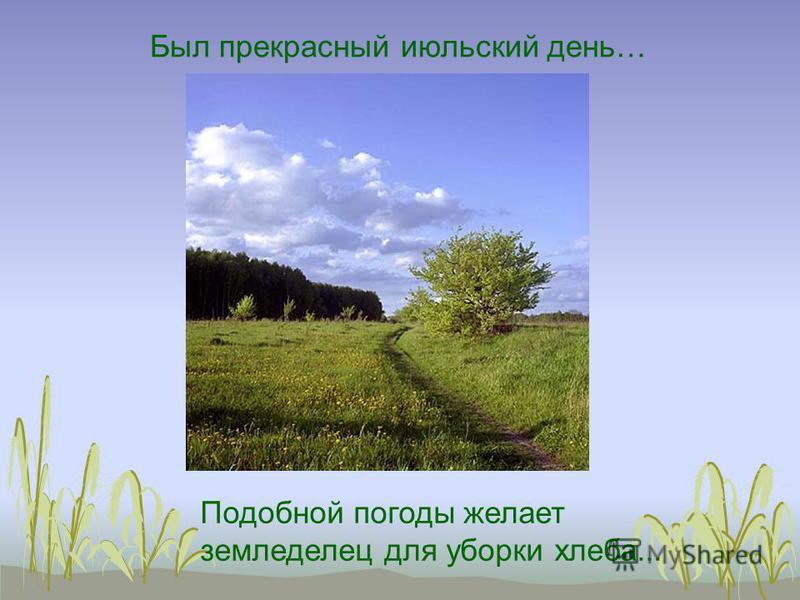 Был прекрасный июльский день… Подобной погоды желает земледелец для уборки хлеба...