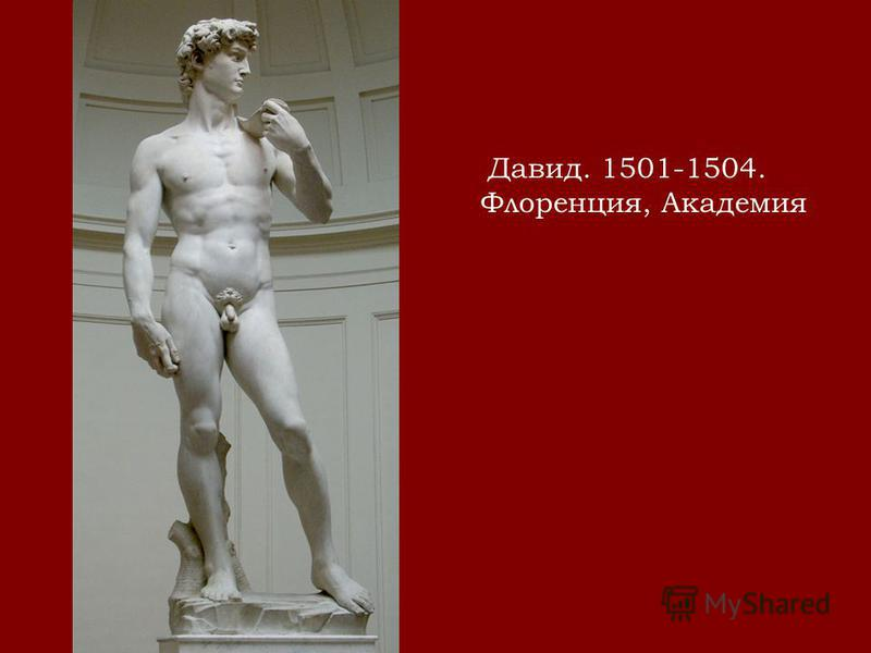 Давид. 1501-1504. Флоренция, Академия