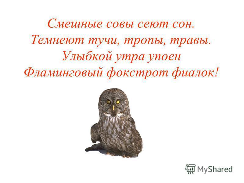 Смешные совы сеют сон. Темнеют тучи, тропы, травы. Улыбкой утра упоен Фламинговый фокстрот фиалок!