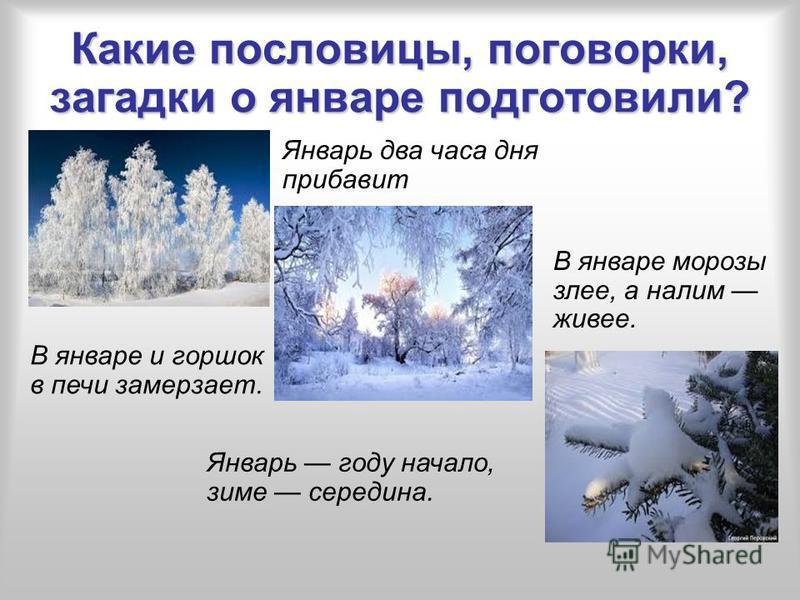 Какие пословицы, поговорки, загадки о январе подготовили? В январе и горшок в печи замерзает. Январь году начало, зиме середина. Январь два часа дня прибавит В январе морозы злее, а налим живее.