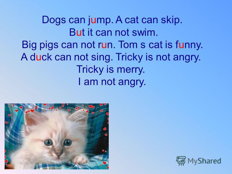 Dogs can jump. A cat can skip. But it can not swim. Big pigs can not run. Tom s cat is funny. A duck can not sing. Tricky is not angry. Tricky is merry. I am not angry.