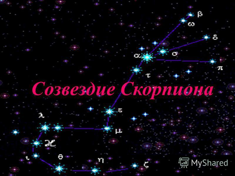 Созвездие Скорпион Созвездие Скорпиона