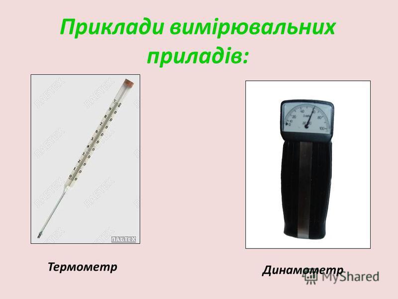 Приклади вимірювальних приладів: Термометр Динамометр