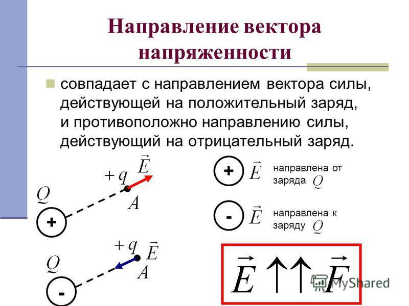 Направление вектора напряженности совпадает с направлением вектора силы, действующей на положительный заряд, и противоположно направлению силы, действующий на отрицательный заряд. - + направлена от заряда + - направлена к заряду