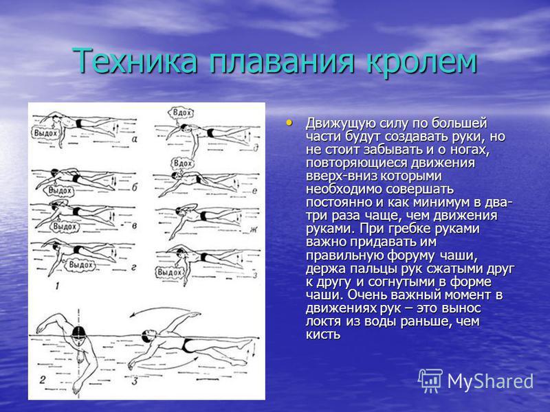 Техника плавания кролем Движущую силу по большей части будут создавать руки, но не стоит забывать и о ногах, повторяющиеся движения вверх-вниз которыми необходимо совершать постоянно и как минимум в два- три раза чаще, чем движения руками. При гребке