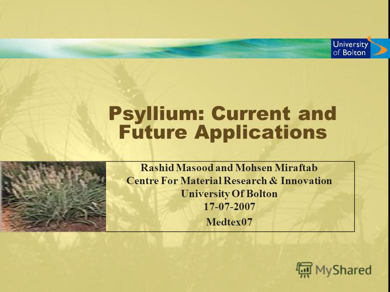 Psyllium: Current and Future Applications Rashid Masood and Mohsen Miraftab Centre For Material Research & Innovation University Of Bolton 17-07-2007 Medtex07