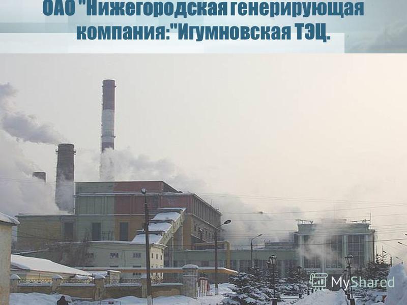 ОАО Нижегородская генерирующая компания:Игумновская ТЭЦ.
