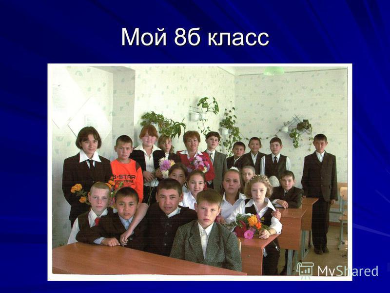 Мой 8 б класс