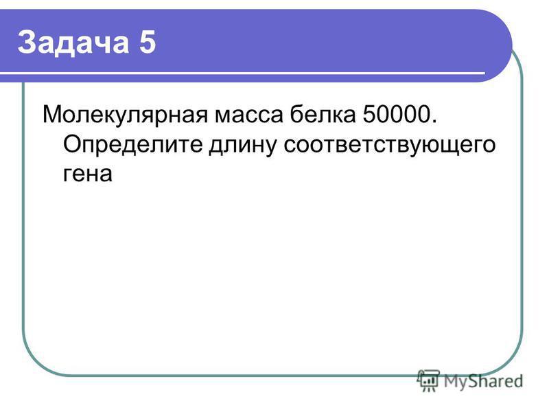 Задача 5 Молекулярная масса белка 50000. Определите длину соответствующего гена