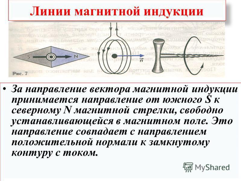 Линии магнитной индукции За направление вектора магнитной индукции принимается направление от южного S к северному N магнитной стрелки, свободно устанавливающейся в магнитном поле. Это направление совпадает с направлением положительной нормали к замк