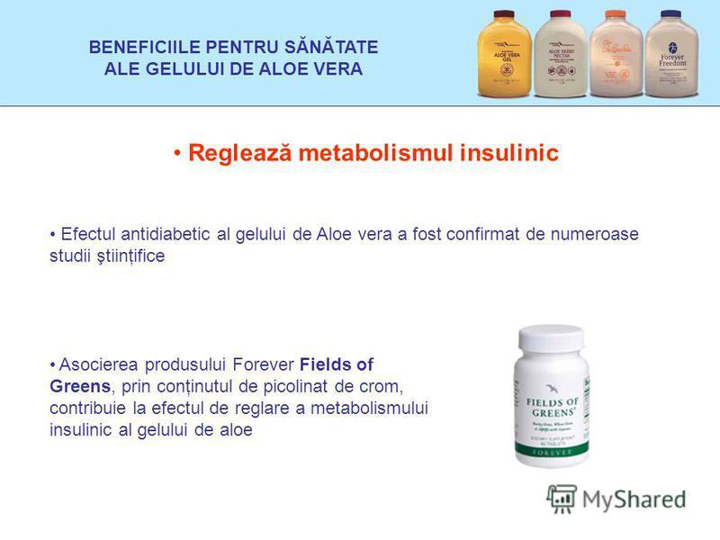 Reglează metabolismul insulinic Efectul antidiabetic al gelului de Aloe vera a fost confirmat de numeroase studii ştiinţifice Asocierea produsului Forever Fields of Greens, prin conţinutul de picolinat de crom, contribuie la efectul de reglare a meta