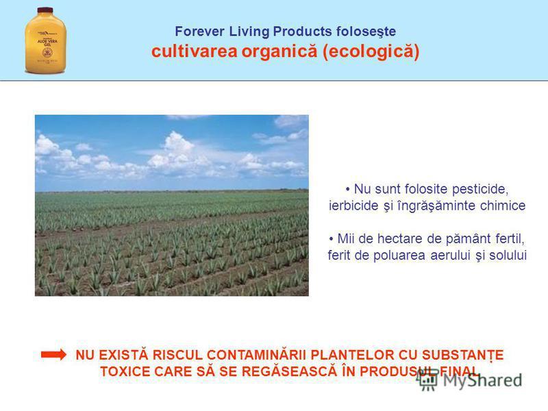 Forever Living Products foloseşte cultivarea organică (ecologică) Nu sunt folosite pesticide, ierbicide şi îngrăşăminte chimice Mii de hectare de pământ fertil, ferit de poluarea aerului şi solului NU EXISTĂ RISCUL CONTAMINĂRII PLANTELOR CU SUBSTANŢE