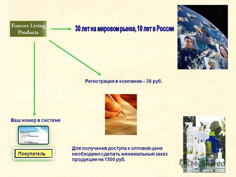 Покупатель Регистрация в компании – 38 руб. Для получения доступа к оптовой цене необходимо сделать минимальный заказ продукции на 1500 руб. Ваш номер в системе