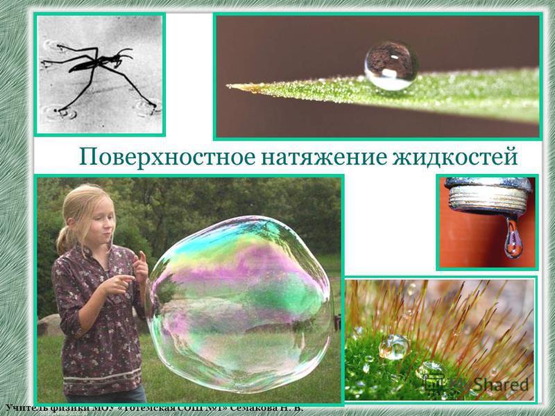 Учитель физики МОУ «Тотемская СОШ 1» Семакова Н. В. Поверхностное натяжение жидкостей