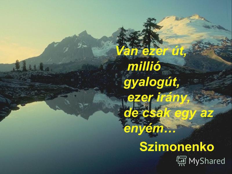 Van ezer út, millió gyalogút, ezer irány, de csak egy az enyém… Szimonenko