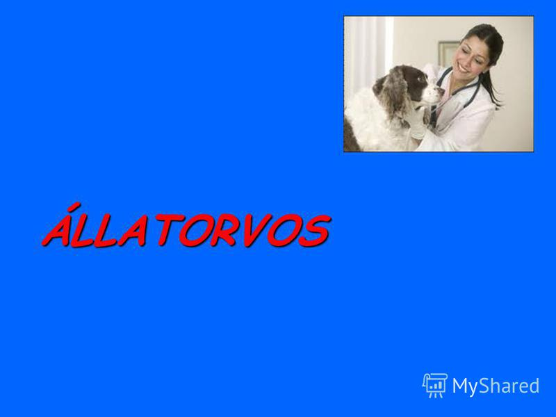 ÁLLATORVOS