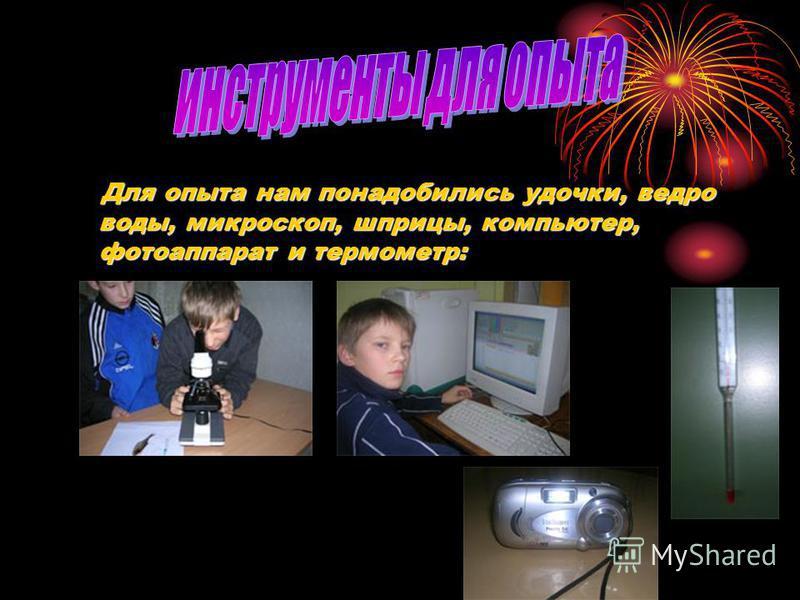Для опыта нам понадобились удочки, ведро воды, микроскоп, шприцы, компьютер, фотоаппарат и термометр: