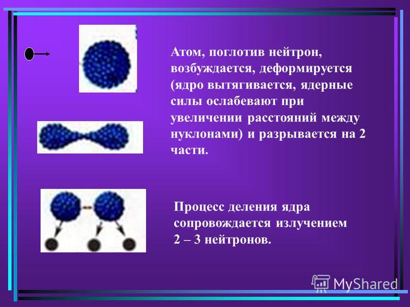 Атом, поглотив нейтрон, возбуждается, деформируется (ядро вытягивается, ядерные силы ослабевают при увеличении расстояний между нуклонами) и разрывается на 2 части. Процесс деления ядра сопровождается излучением 2 – 3 нейтронов.