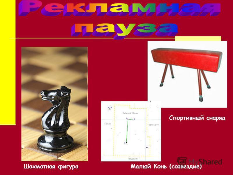 Малый Конь (созвездие) Спортивный снаряд Шахматная фигура