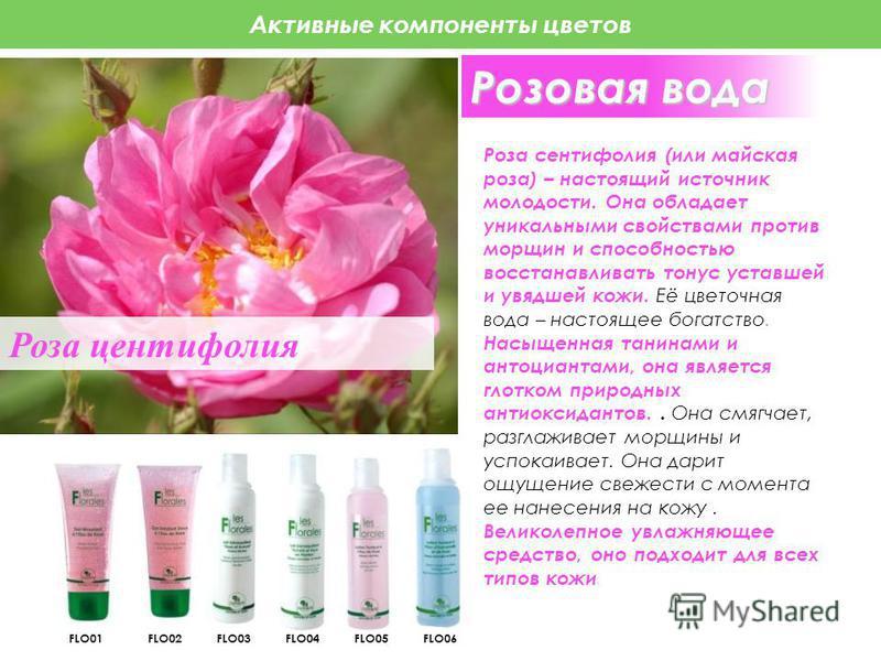 Активные компоненты цветов Роза центифолия (или майская роза) – настоящий источник молодости. Она обладает уникальными свойствами против морщин и способностью восстанавливать тонус уставшей и увядшей кожи. Её цветочная вода – настоящее богатство. Нас