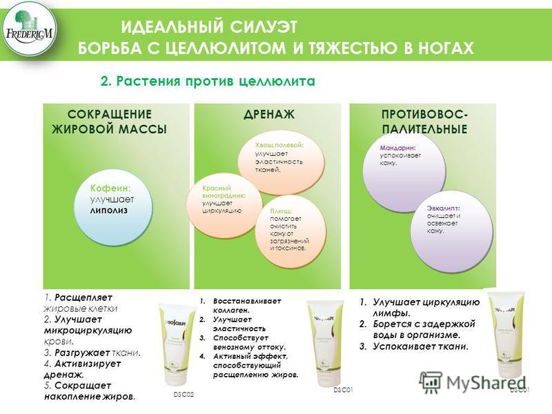 ИДЕАЛЬНЫЙ СИЛУЭТ БОРЬБА С ЦЕЛЛЮЛИТОМ И ТЯЖЕСТЬЮ В НОГАХ 2. Растения против целлюлита Хвощ полевой: улучшает эластичность тканей. Красный виноградник: улучшает циркуляцию Кофеин: улучшает липолиз Плющ: помогает очистить кожу от загрязнений и токсинов.